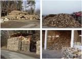 Αντιδράσεις για την ΔΑΔ Μεταφοράς Δασικών Προϊόντων του ΔασαρχείουΙωαννίνων