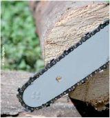 Δασαρχείο Ελασσόνας: Εφαρμογή των Κανονισμών της ΕΕ (Ξυλείας καιFLEGT)
