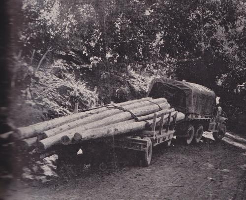 Στύλοι ΔΕΗ στην Πίνδο, 1960 (από το αρχείο του συγγραφέα).