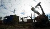 Η Νορβηγία επιδοτεί τη Λιβερία να σταματήσει την αποψίλωση τωνδασών