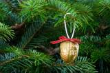 WWF: Χριστούγεννα φιλικά προς τους αγαπημένους μας και προς τονπλανήτη