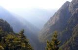 Δ/νση Δασών Χανίων: Ανακοίνωση για την Παγκόσμια ΗμέραΔασοπονίας
