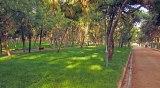 Νέος Κανονισμός Λειτουργίας Πάρκων και Αλσών της ΠεριφέρειαςΑττικής