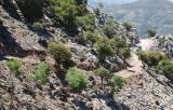 Ανακοίνωση Συλλόγου Εργαζομένων Αποκ. Διοίκησης Κρήτης για το βίαιο προπηλακισμό δύο δασικών υπαλλήλων