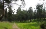 Κριτική αξιολόγηση των «Προδιαγραφών Σύνταξης των Μελετών Διαχείρισης Πάρκων καιΑλσών»
