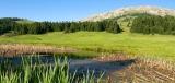 Εγκρίθηκε το μεγαλύτερο έργο LIFE για το φυσικό περιβάλλον και τη βιοποικιλότητα στην Ελλάδα, ύψους 17 εκ.ευρώ