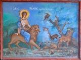 Οι άγιοι της άγριαςζωής
