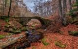 Φθινόπωρο στη Ροδόπη