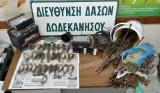 Καταδικάστηκε για 117 σπουργίτια και 131ξόβεργες