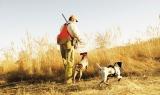 H Διεύθυνση Δασών Σάμου ενημερώνει τουςκυνηγούς