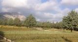 Με γεώτρηση εξασφαλίζεται η υδατική αυτάρκεια στο δασικό φυτώριο Αμυγδαλέζας