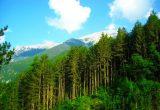 Εθνικό Πάρκο μετ' εμποδίων το «Βουνό τωνΘεών»