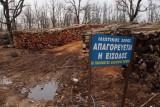 Νέα μελέτη με πρόσθετους όρους ζητά η Γενική Διεύθυνση Δασών για τιςΣκουριές