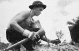 O «Στρατός των Δένδρων του Ρούσβελτ» στην καταπολέμηση της ανεργίας στιςΗΠΑ
