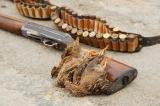 Κυνηγετική Συνομοσπονδία Ελλάδος: Ανακοίνωση για την έναρξη του Εθνικού Διαλόγου για τοκυνήγι