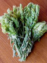 Ρύθμιση συλλογής αρωματικών – φαρμακευτικών φυτών, μυκήτων κλπ για  το νομόΠιερίας.