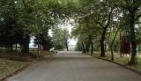 Η φύτευση δέντρων στις μεγαλουπόλεις μπορεί να εξοικονομήσει ετησίως εκατοντάδεςεκατομμύρια