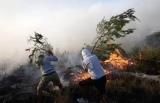 Στο 1,5 εκατ. ευρώ οι αποζημιώσεις για τις πυρκαγιές του2013