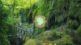Διαχείριση Δασικών Οικοσυστημάτων με χρήση G.I.S. Η περίπτωση του Δημοσίου ΔάσουςΣκρα-Φανού