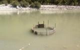 Προστασία της χλωρίδας και της πανίδας στην περιοχή του Εθνικού Πάρκου Τζουμέρκων, Περιστερίου και χαράδραςΑράχθου