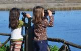 Εκδήλωση παρατήρησης άγριας ορνιθοπανίδας στον υγρότοποΜουστού