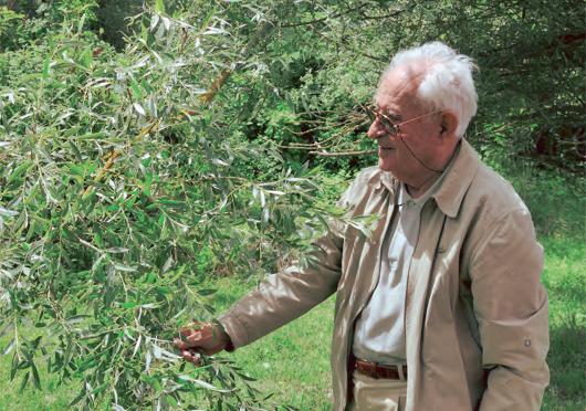 Σπύρος Ντάφης (1927-2014). Ομότιμος καθηγητής δασοκομίας του Αριστοτελείου Πανεπιστημίου Θεσσαλονίκης.