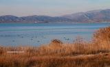 Κυριότητα του Ελληνικού Δημοσίου στη λίμνηΒιστωνίδα