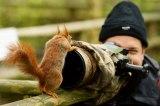 Φωτογραφία άγριας φύσης – Οι καλύτερες φωτογραφίες του φθινοπωρινούδιαγωνισμού