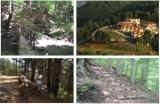Δασαρχείο Κιλκίς: Εκδήλωση για το δάσος τωνΚρουσσίων