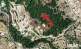 Θα κατατεθεί νομοσχέδιο για τους δασικούςχάρτες;