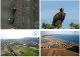 «Τοπία Μακεδονίας – Θράκης: Εθνικά Πάρκα καιΥγρότοποι»