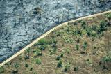 Η άγρια φύση έχει μειωθεί κατά ένα δέκατο από τη δεκαετία του'90