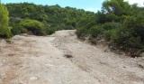 Ζάκυνθος: Παράνομη διαπλάτυνση δασικού δρόμου σε καταφύγιο άγριαςζωής
