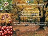 Δ/νση Δασών Λέσβου: Αποτίμηση αποτελεσμάτων και διάλεξη για την βιολογική καταπολέμηση του έλκους της καστανιάς