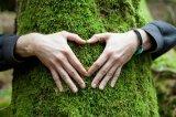 Ο περιβαλλοντικός ακτιβισμός«σκοτώνει»