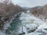 Γρεβενά: Απαγορεύεται το κυνήγι από 11/1 και μέχρινεωτέρας