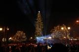 Το ψηλότερο φυσικό χριστουγεννιάτικο δέντρο τηςΕλλάδας