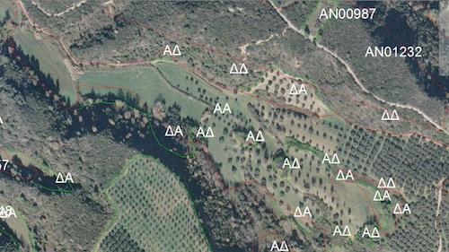 Αεροφωτογραφία 2008