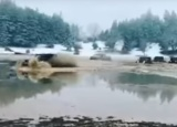 Παράνομη και καταστροφική για τη φύση η βάρβαρη επιδρομή στην προστατευόμενη λίμνη τουΚαλλίδρομου