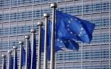Στην Ευρωπαϊκή Επιτροπή oι δασικοί χάρτες απόΚεφαλογιάννη