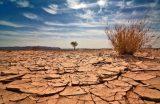 Φύση και Κλιματική αλλαγή με δυολόγια