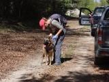 Περιστατικό δηλητηριασμένων δολωμάτων στο Εθνικό Πάρκο ΟροσειράςΡοδόπης