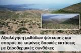 Αξιολόγηση μεθόδων φύτευσης και σποράς σε καμένες δασικές εκτάσεις με ξηροθερμικέςσυνθήκες