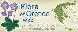 Flora of Greece web – Ιστότοπος για την ελληνικήχλωρίδα