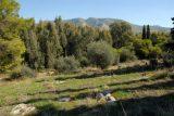 Πρωτότυπη κτήση κυριότητας του Ελληνικού Δημοσίου σε δάση και λιβάδια τηςεπικράτειας