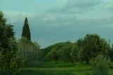 Ακύρωση πράξης κύρωσης του δασικού χάρτη ΜαραθώναΑττικής