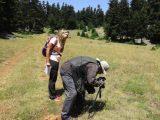 Αναζήτηση και φωτογράφιση σημαντικών ειδών πεταλούδωνστο ΌροςΠαρνασσός