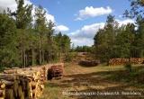 Ξεκίνησε η εφαρμογή του Ειδικού Διαχειριστικού Σχεδίου στη Ζώνη Α του Εθνικού Πάρκου Δάσους «Δαδιάς–Λευκίμμης-Σουφλίου»