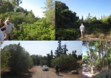 Πώς μεθοδεύτηκε ο αποχαρακτηρισμός και της τελευταίας δασικής έκτασης στοΕλληνικό