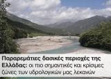 Παραρεμάτιες δασικές περιοχές της Ελλάδας: οι πιο σημαντικές και κρίσιμες ζώνες των υδρολογικών μαςλεκανών